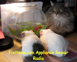Fixitnow.com Appliance Repair Radio podcast, episode 18-- Listen now!